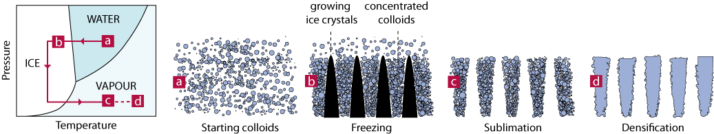 Ice Templating Of Porous Materials Sylvain Deville