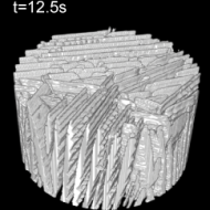 Ice crystals growing in a colloidal suspension, observed by X-ray computed tomography.